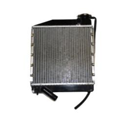 RADIATORE ACQUA MICROCAR LYRA VIRGO I II III MC1 MC2 MOTORE LOMBARDINI