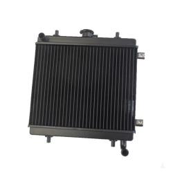 BAF57-0007517 RADIATOR GRECAV EKE LM4 LM5 WITHOUT CAP